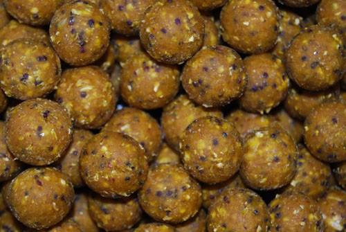 Cream Scopex Boilies - 2,5kg