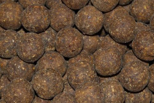 Mussel+ Boilies - 2,5kg